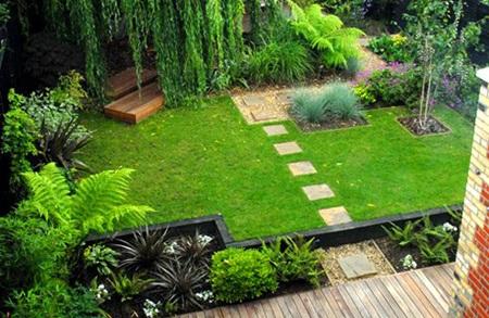 Bạn có thể trồng cây trên sân cỏ nhân tạo hay không? 1