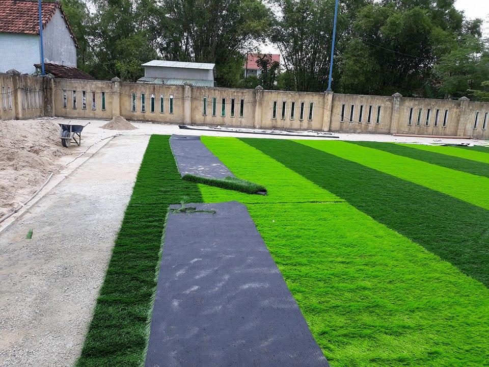 Một số hình ảnh của dự ánsân bóng cỏ nhân tạo Thể dục thể thao - Trường tiểu học Nguyễn Trãi, Thị tr� 3