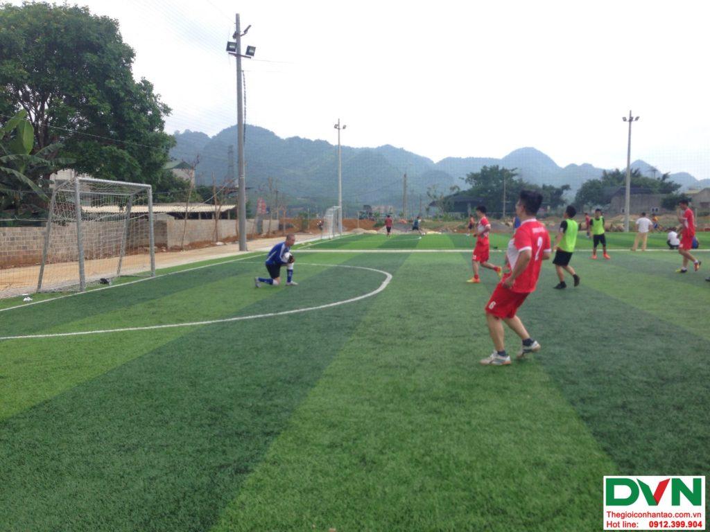 Một số hình ảnh của dự ánsân bóng cỏ nhân tạo tại Phố Sấu, Lạc Thịnh, Hòa Bình 3