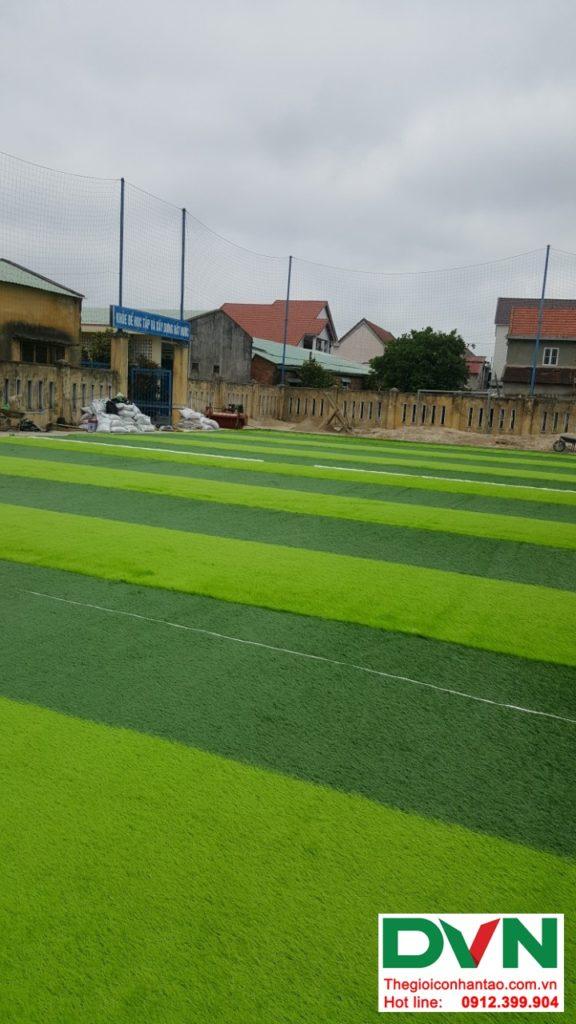 Một số hình ảnh của dự ánsân bóng cỏ nhân tạo Thể dục thể thao - Trường tiểu học Nguyễn Trãi, Thị tr� 5