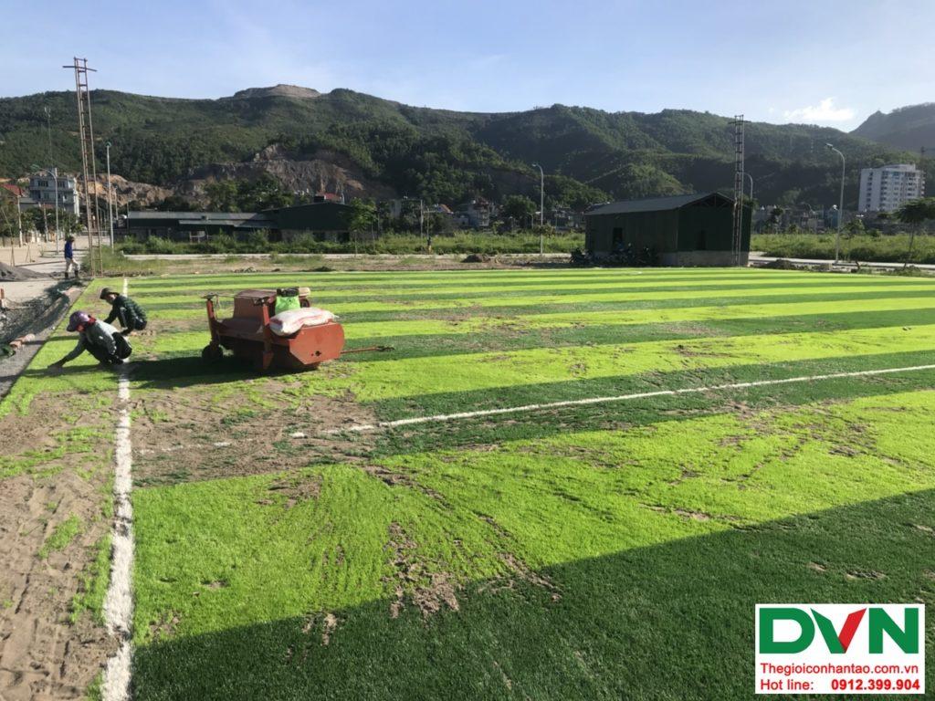 Một số hình ảnh của dự ánsân bóng cỏ nhân tạo tại Quang Hanh, Cẩm Phả, Quảng Ninh 6