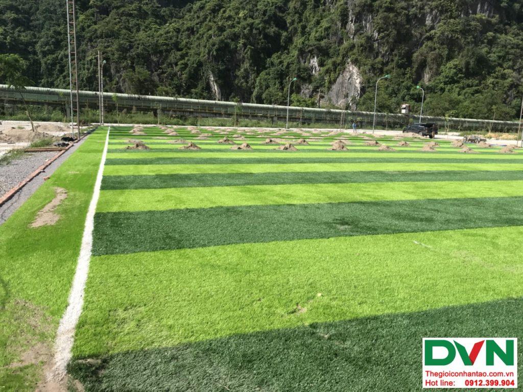 Một số hình ảnh của dự ánsân bóng cỏ nhân tạo tại Quang Hanh, Cẩm Phả, Quảng Ninh 8