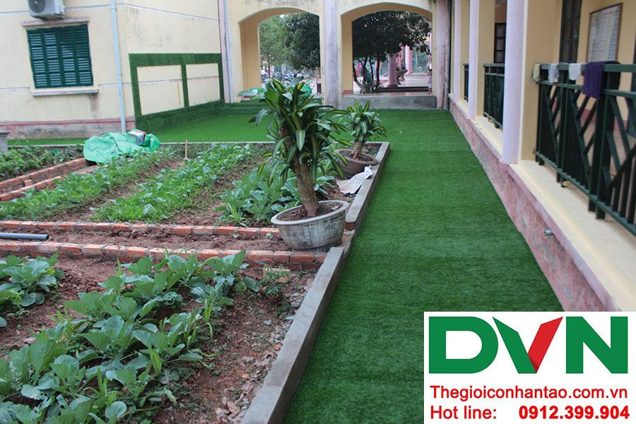 Một số hình ảnh dự án trải sân Trường mầm non Bắc Sơn, Sóc Sơn, Hà Nội 6