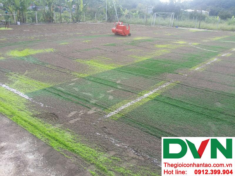 Một số hình ảnh tại Dự án sân cỏ nhân tạoXã Chiềng Ngần - Thành phố Sơn La 3