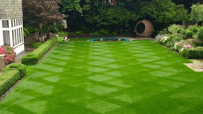 Mẫu cỏ nhân tạo sân vườn đẹp