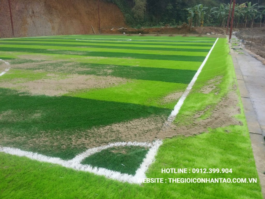 Hãy cùng xem qua những hình ảnh trên sân bóng đá tạiTà Phờ, Lào Cai 6