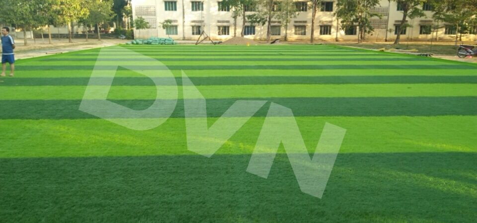 Giai đoạn: Thi công trải thảm cỏ