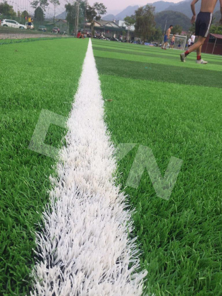 1, Một số hình ảnh của dự án sân bóng đátạiTp.Lai Châu 3