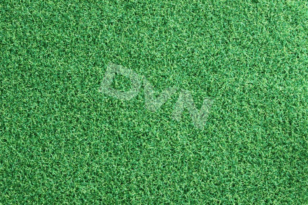 Mặt cỏ nhân tạo sân golf DVN G2