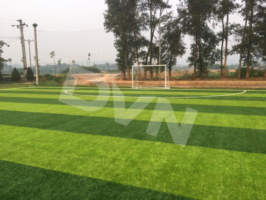 Hình ảnh sân bóng sau khi thay cỏ mới