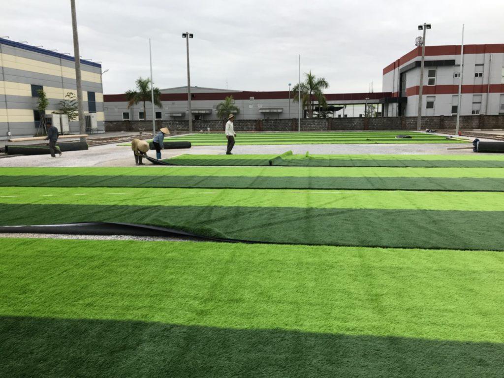 Trải các cuộn cỏ từ hai biên ngang về giữa sân