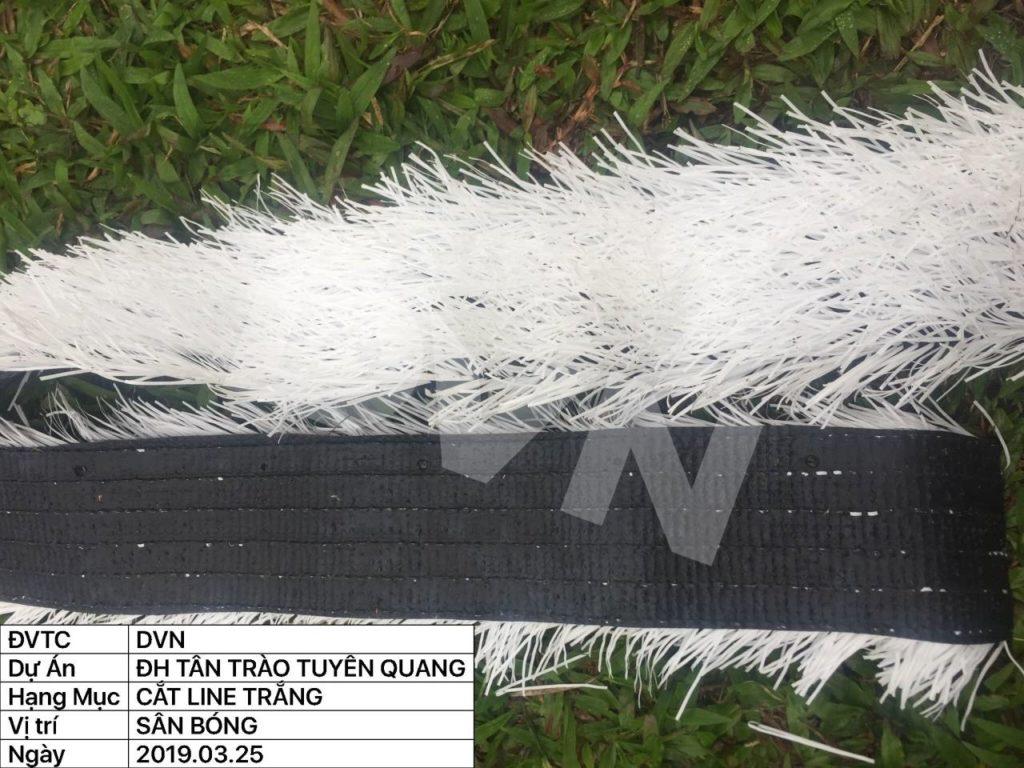 Cắt đường like cỏ trắng kích thước 10cm