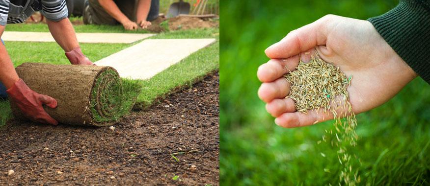 1. Khi nào nên dùng cỏ nhân tạo? 3