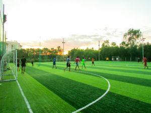 Tại sao bạn nên lựa chọn thi công sân bóng cỏ nhân tạo tại Cỏ nhân tạo DVN 9