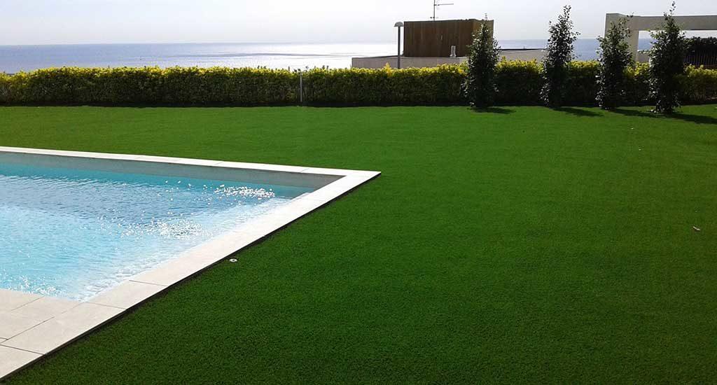 2, Loại cỏ nào được ưa chuộng quanh bề bơi 7