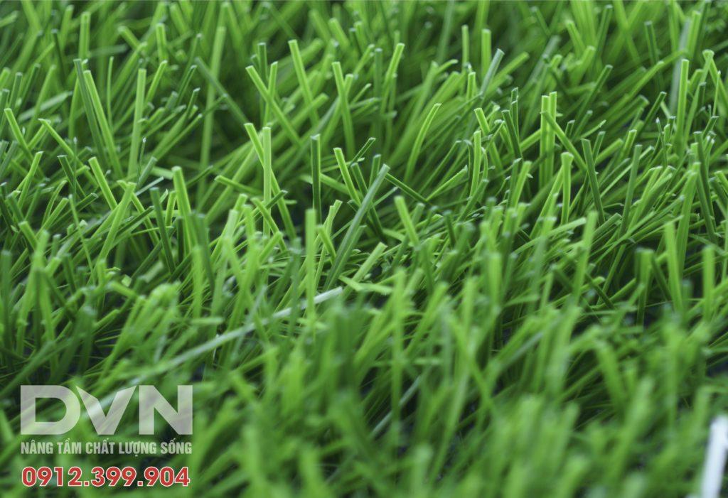 3, Lựa chọn mẫu cỏ phù hợp 1