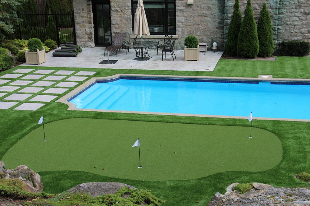 2, Loại cỏ nào được ưa chuộng quanh bề bơi 3