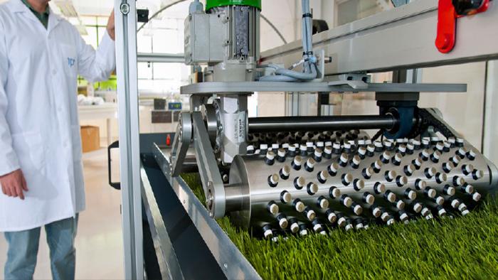1, Thế nào là một sản phẩm cỏ nhân tạo đạt chuẩn FiFa? 3