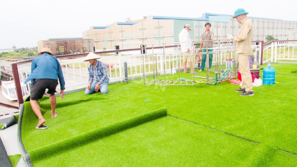 1, Một số hình ảnh của dự ánTrải cỏ Du thuyền 5 sao Amour Cruise 15