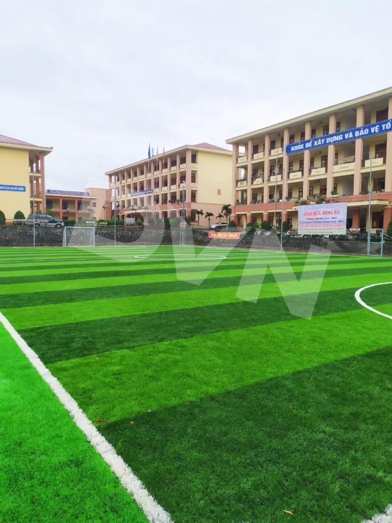 1, Một số hình ảnh của dự án sân bóng đáChi nhánh Luyện đồng Lào Cai 8