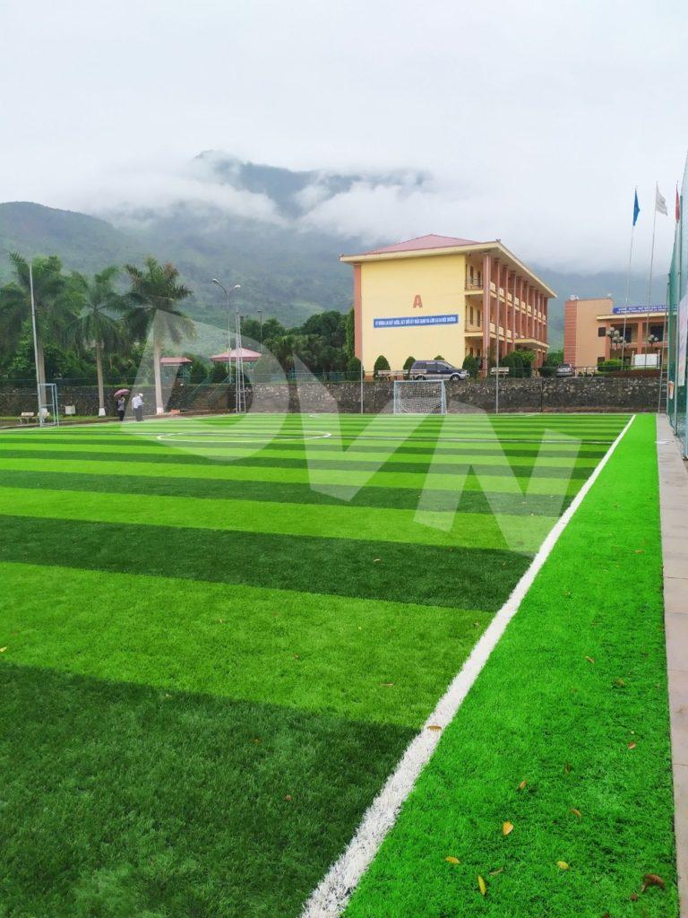 1, Một số hình ảnh của dự án sân bóng đáChi nhánh Luyện đồng Lào Cai 3