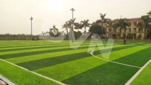 Tại sao bạn nên lựa chọn thi công sân bóng cỏ nhân tạo tại Cỏ nhân tạo DVN 8