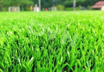 Tại sao nên lựa chọn sản phẩm cỏ nhân tạo bóng đá tại DVN ?