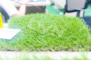 2.Mật độ sợi cỏ mỏng hay dầy thì phù hợp cho văn phòng? 1