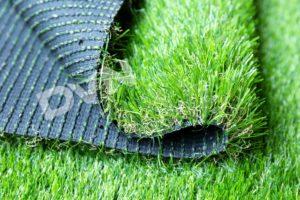Loại cỏ 2