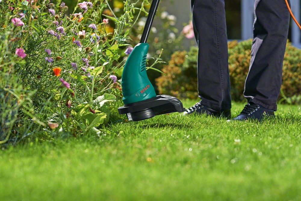 2. Khi nào nên dùng cỏ tự nhiên? 2