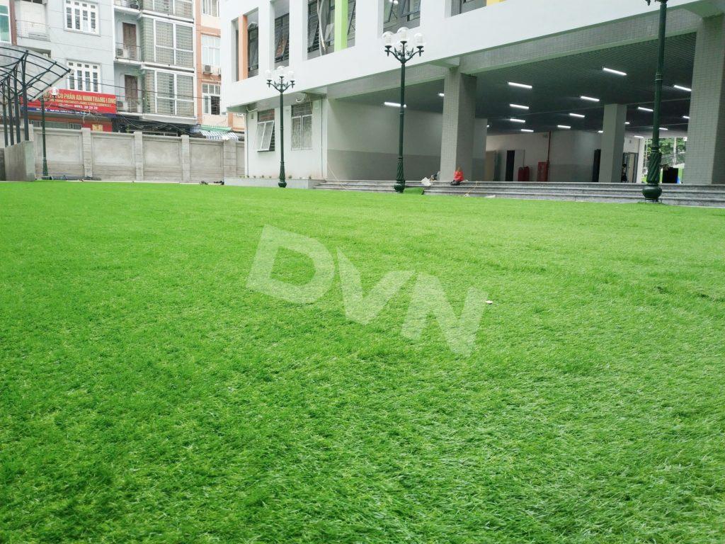 Trải cỏ nhân tạo trường học