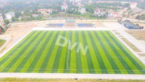 Chọn cỏ nhân tạo cho sân bóng đá cần chú ý điều gì 2