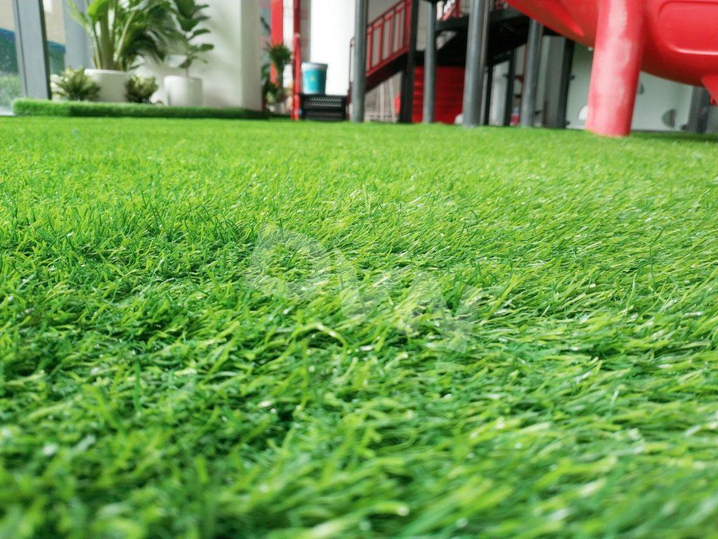 1, Một sốdự ántrải cỏ tạiTrường Mầm non quốc tế Canada Maple Bear 5