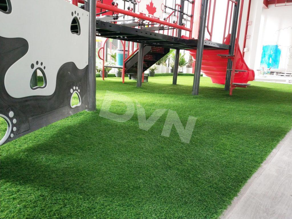 1, Một sốdự ántrải cỏ tạiTrường Mầm non quốc tế Canada Maple Bear 2