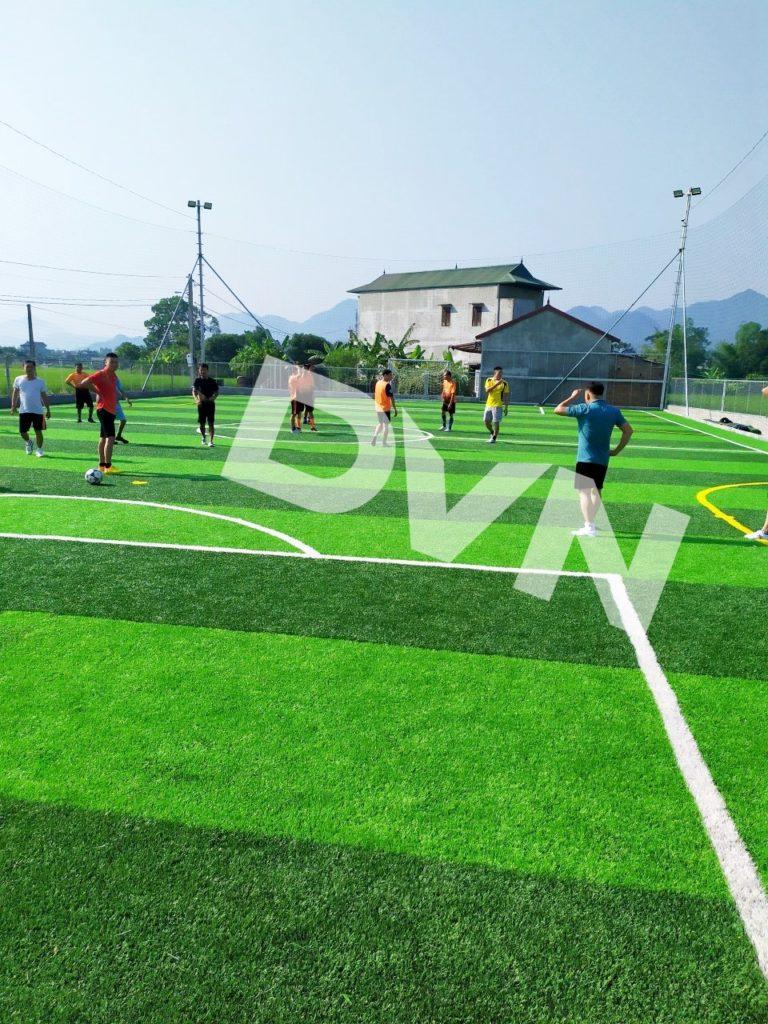 1, Một số hình ảnh sân bóng cỏ nhân tạo Tràng Định 6