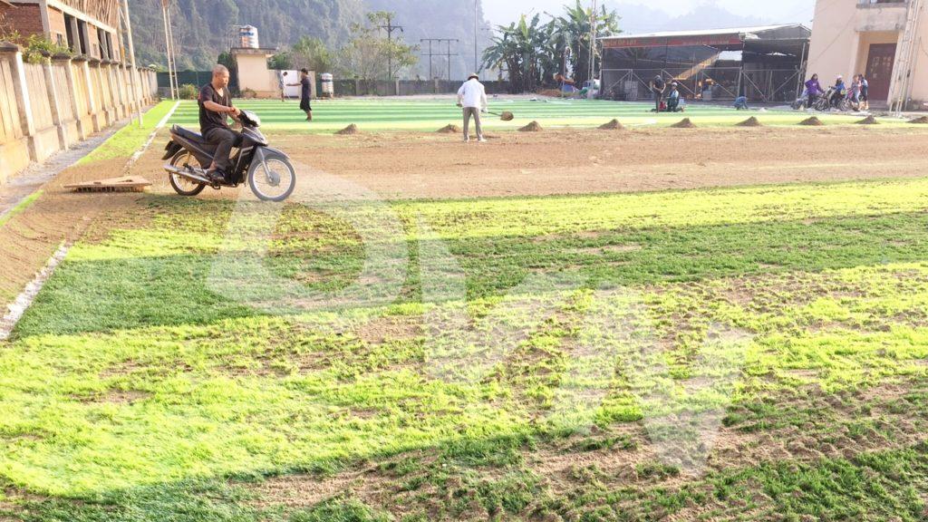 1, Một số hình ảnh sân bóng tạiMường Khương, Lào Cai 11