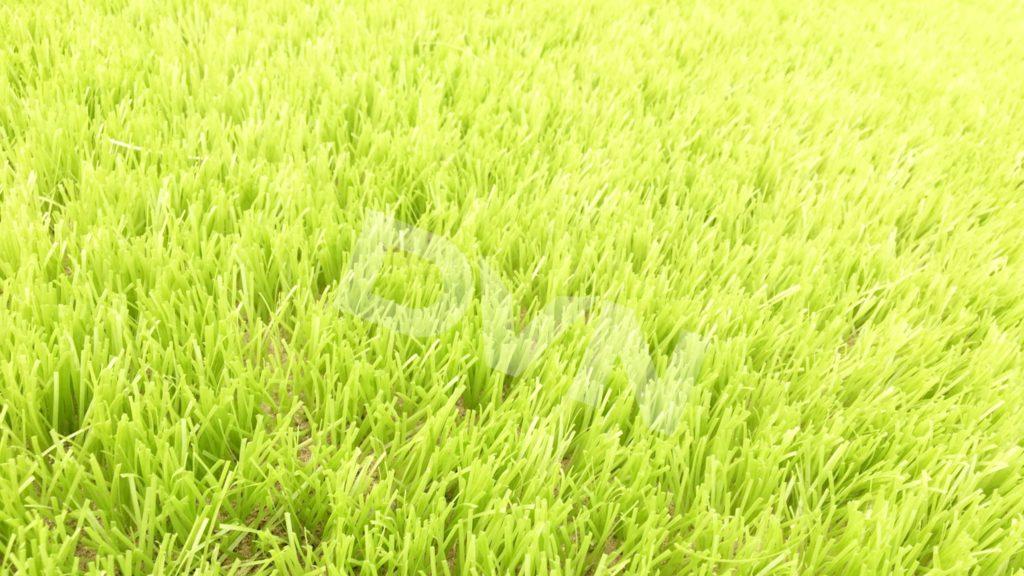 1, Một số hình ảnh sân bóng tạiMường Khương, Lào Cai 12