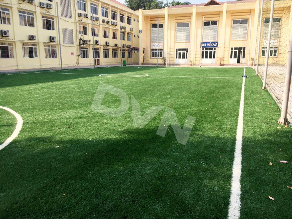 1, Một số hình ảnh sân bóng Trường tiểu học Tiền Phong 8