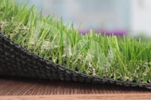 1.Cách chọn cỏ có chiều cao cọc phù hợp trong văn phòng. 4