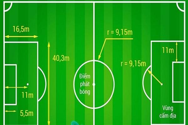Kích thước sân bóng đá mini 7 người tiêu chuẩn ở VFF thế nào? 1