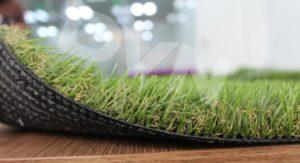 Loại cỏ 1