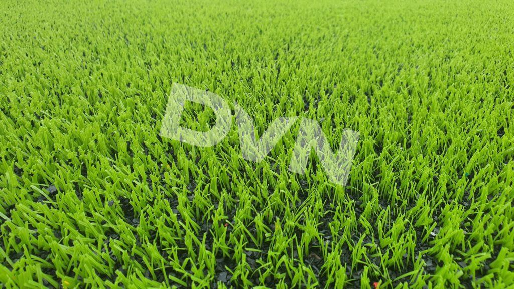 1,Một số hình ảnh thi công sân bóng cỏ nhân tạoTrường Tiểu học Dĩnh Kế 1