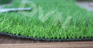 1.Cách chọn cỏ có chiều cao cọc phù hợp trong văn phòng. 1
