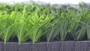 Về chiều cao của sợi cỏ nhân tạo 1