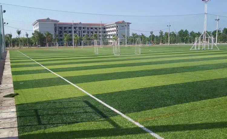Dịch vụ thi công sân banh cỏ nhân tạo 7 người Quảng Trị uy tín và chất lượng hàng đầu 2