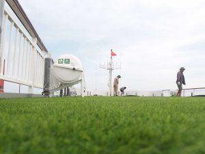 1, Một số hình ảnh của dự ánTrải cỏ Du thuyền5 sao Amouir Cruise 7