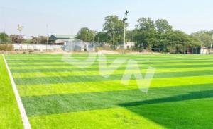 Một số mẫu cỏ nhân tạo sân bóng tiêu biểu 7