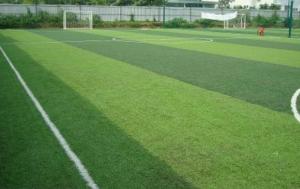 Một số mẫu cỏ nhân tạo sân bóng tiêu biểu 8