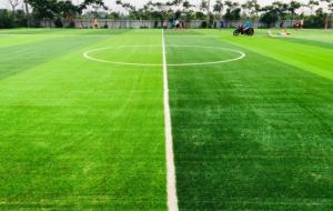 Một số mẫu cỏ nhân tạo sân bóng tiêu biểu 9