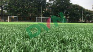 Cỏ nhân tạo của Cỏ nhân tạo DVN có nên dùng cho bóng đá không? 7